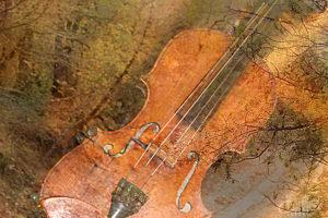 Музыка чувств сокровенных