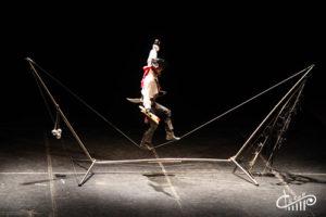 Цирковое шоу в СЦКиИ