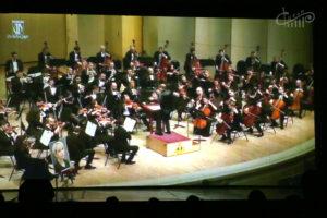 Концерт памяти Елизаветы Глинки в виртуальном зале СЦКиИ